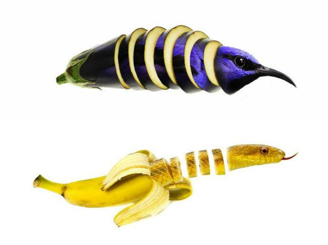 sarah-deremer-funky-hybrid-animals5