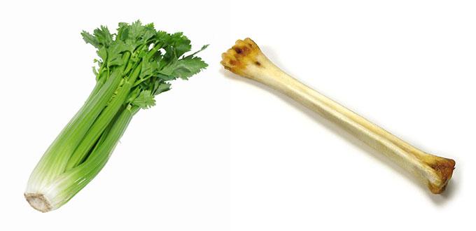 celeri-os