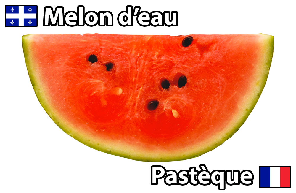 bob-le-chef-termes-culinaires-france-vs-qc-pasteque